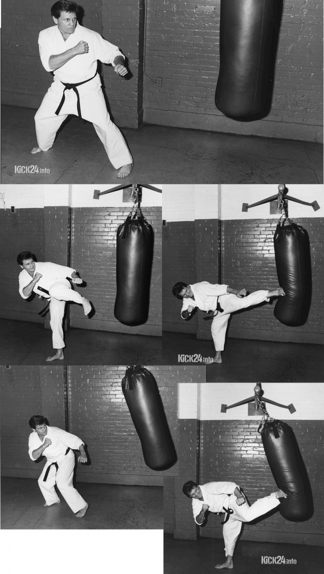 sidekick kickboxing
